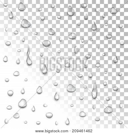 Realistic vector water drops transparent background. Clean drop condensation illustration. Vector clear vapor bubbles on window glass surface for your design.