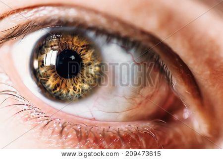 Human eye macro, selective focus on eyeball, fearful or surprised glance concept