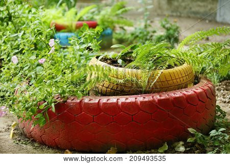 Old tires used as flowerbed outdoors