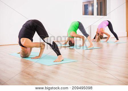 Three girls practicing yoga, Padottanasana / Standing separate leg stretching pose