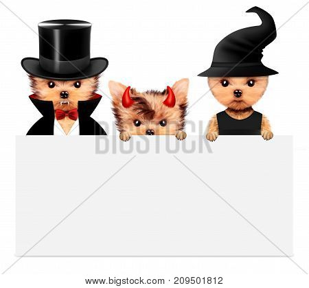 Funny cartoon animal Dracula, devil and witch behind a banner. Halloween and Dead day concept. Realistic 3D illustration.