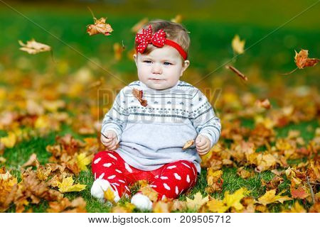 Adorable little baby girl in autumn park on sunny warm october day with oak and maple leaf. Fall foliage. Family outdoor fun in fall. child smiling