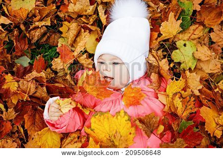 Adorable little baby girl in autumn park on cold october day with oak and maple leaf. Fall foliage. Family outdoor fun in fall. child smiling. Baby with warm fall clothes