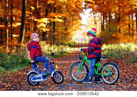Two little kids boys, best friends in autumn forest with bikes. Active siblings, children with bicycles. Boys in colorful fashion fall clothes having fun together, laughing and smiling on sunny day