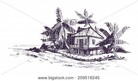Tropical beach with palm trees and bungalow. Hand drawn sketch. Vector illustration.