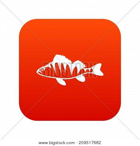 European perch, Perca fluviatilis icon digital red for any design isolated on white vector illustration