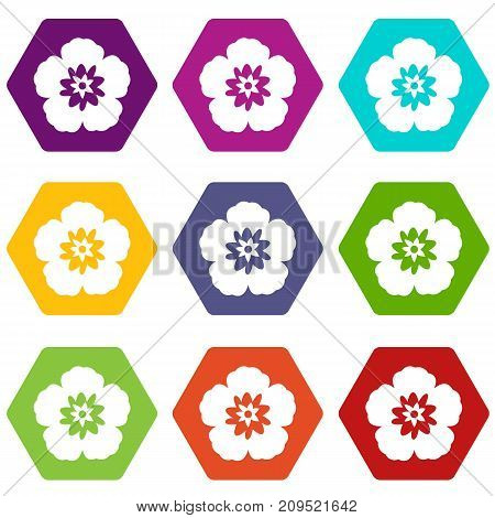 Rose of Sharon, korean national flower icon set many color hexahedron isolated on white vector illustration