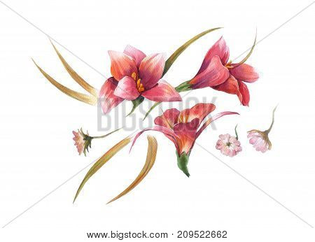 watercolor painting of red leaves and flower on white background