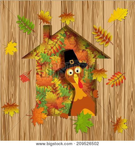 Happy Thanksgiving Card with Thanksgiving Turkey and autumn leave