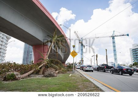 Miami Florida USA September 20 2017: Damaged palm trees on one of the streets. After hurricane Irma. Trash and damaged objects under the bridge.