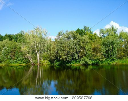 Russian nature. The green woods. Lake in summer forest. Green trees reflected in the lake in Russian. Summer landscape. Russian forest in summer in Sunny day. Nature Reserve. The lake in Russia. Travel in Russia