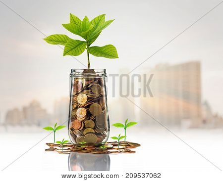 Gold coins and seed in clear bottle on photo blurred cityscape backgroundBusiness investment growth concept, 3D illustration