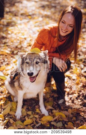 laughing red-haired girl playing in autumn park with her dog