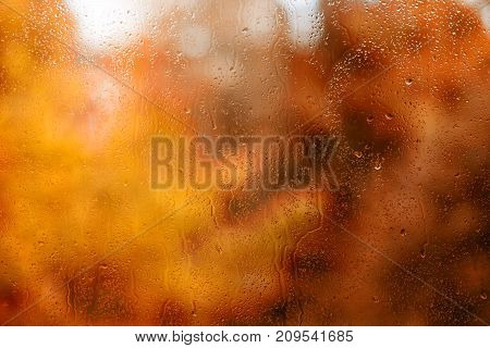 Water drops on wet glass against defocused autumn foliage. Large texture and background