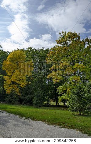 Popular  North park  for rest with autumnal old forest in  Vrabnitsa district, Sofia, Bulgaria