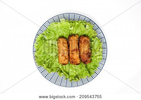 Homemade Spring rolls on a plate