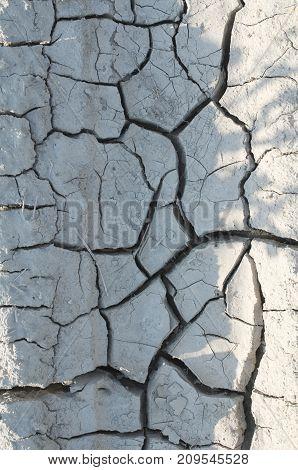 Dry Land Closeup
