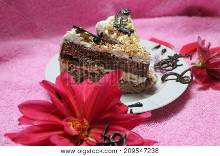 sweet chocolate cake with cream lay on plate decorated red bloom flowers