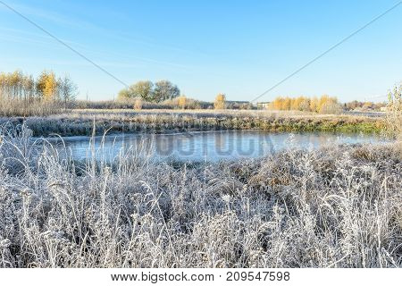 Autumn Autumn Frost first frost Forest Frost Frost On The Grass Frost On The Leaves Frost On The Plants Frozen Plant Frozen Pond Frozen River Late Autumn Nature River Bank Shore Thin Ice