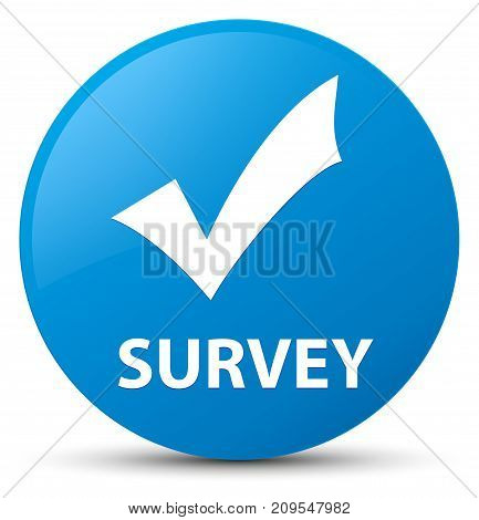 Survey (validate icon) isolated on cyan blue round button abstract illustration poster