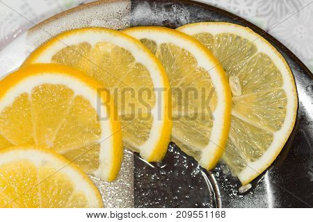 sliced lemon on a plate . photo in the studio