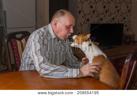 Basenji dog having hard conversation with master sitting at the table. The dog shows its last argument.