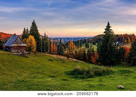 Woodshed And Trees On Hillside Meadow At Sunset