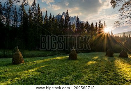 Haystacks On The Forest Meadow In High Tatras