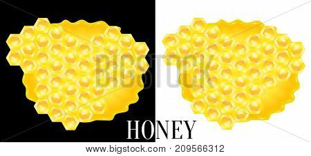 Honeycombs in puddle of sweet bee honey. Vector illustration.