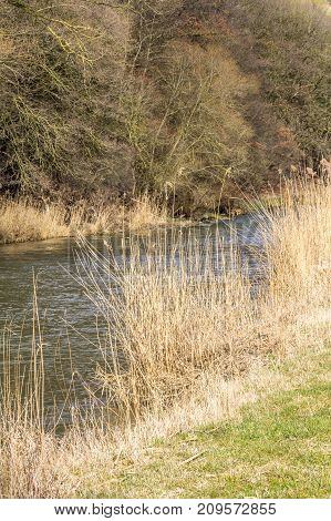 riparian scenery at Jagst river in Southern Germany at early spring time