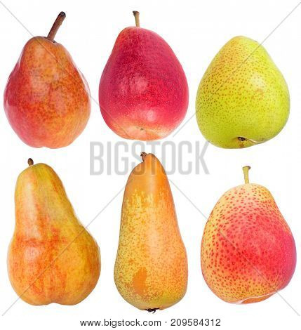 six pears isolated on white background
