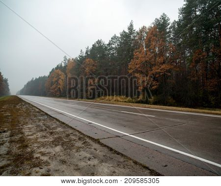 Empty road far from the city with autumn trees. Single line road. Beautiful scenery with colorful yellow-orange forest