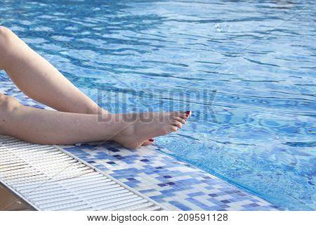 Swimming Pool Summer Vacation