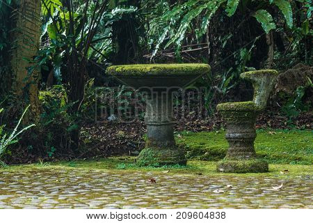 The table and chair are covered with natural moss. Natural moss on furniture
