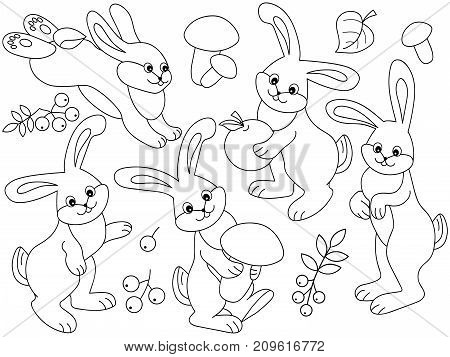 Vector set of black and white cute cartoon rabbits, leaves, mushrooms and berries. Vector rabbit. Vector Easter. Vector bunny. Rabbits vector illustration