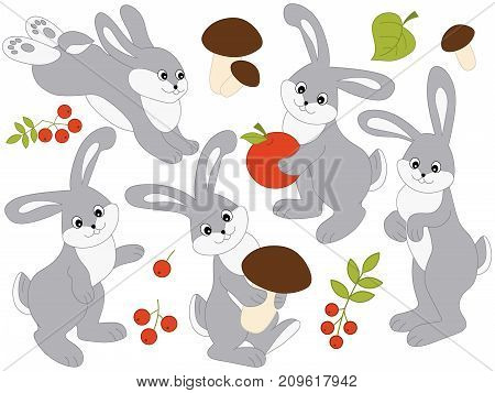 Vector set of cute cartoon rabbits with leaves, mushrooms and berries. Vector rabbit. Vector Easter. Vector bunny. Rabbits vector illustration