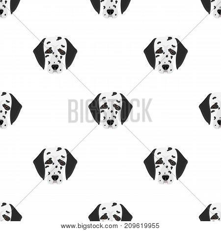 Dog breed, Dalmatian.Muzzle of a Dalmatian single icon in cartoon style vector symbol stock illustration .