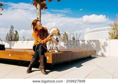 girl with a dog sitting in a park on a bench. Blue sky, good weather, warm autumn day.
