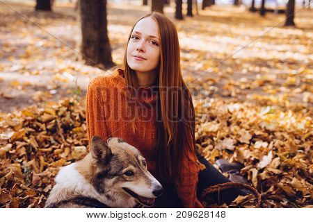 beautiful girl in an orange sweater sits in a park in autumn leaves with her dog and looks into the camera. Autumn warm sunny day.