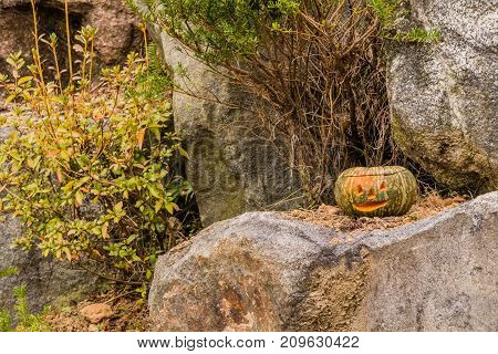 Jack-o-lantern Sitting On Large Boulder