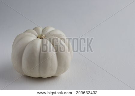 A white mini pumpkin on a white background.