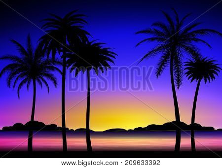 Silhouette of palm trees on the colorful tropical sunset, vector illustration