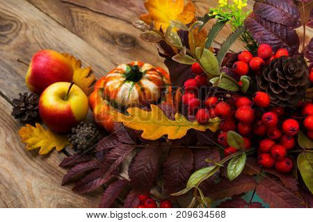 Harvest Background With Rowan, Apples, Pumpkin On Rustic Table