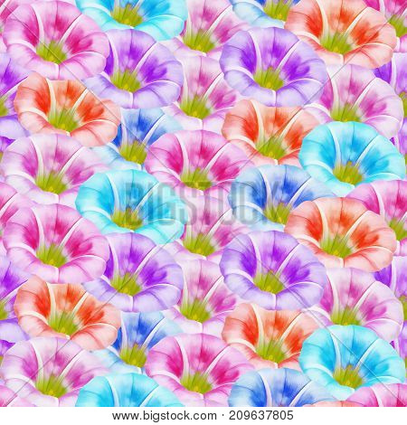 Calystegia sepium larger bindweed. Texture of flowers. Seamless pattern for continuous replicate. Floral background photo collage for production of textile cotton fabric.For use in wallpaper covers