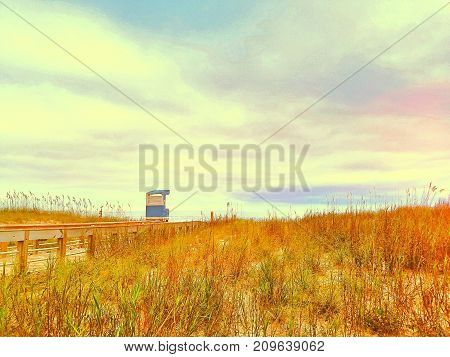 A colorful grassy beach landscape with a lifeguard tower in the background.