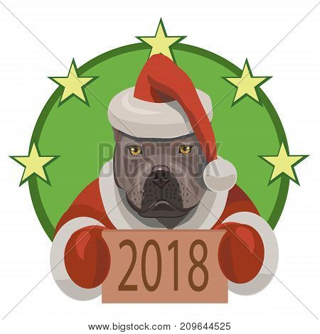 Dog fight pit bull shows that came on a horoscope year of the dog 2018 and he congratulates everybody with new year!