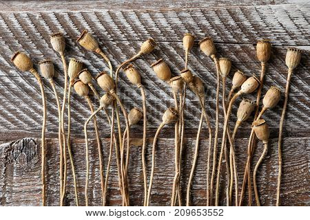 Dried poppy heads on wooden table
