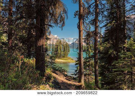 Rocky Mountains - Beautiful view of the Spirit Island in Maligne Lake, from tourist trail in the forest, Jasper National park, Alberta, Canada.