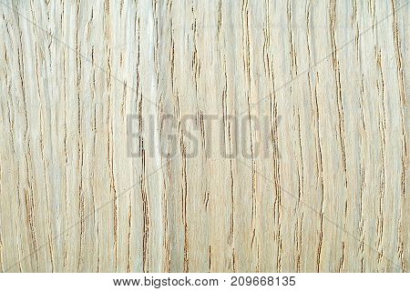 Wooden texture made from old rustic plank