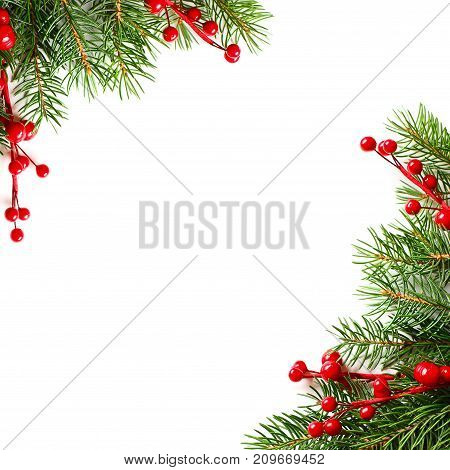 Christmas Background with Red Holly Berries and Xmas Tree Twig